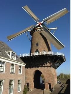 地域保健と看護-オランダの在宅看護