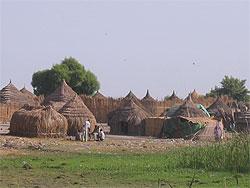 [スーダン]ハンセン病制圧特別行動プロジェクト(SAPEL)