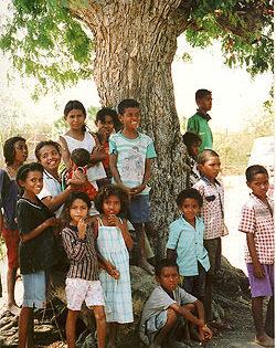 [東ティモール]全国ハンセン病制圧プログラムの強化