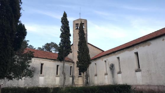 ポルトガル ロビスコ・パイス療養所における歴史保存活動支援 (第二フェーズ)〜2020年度活動報告④